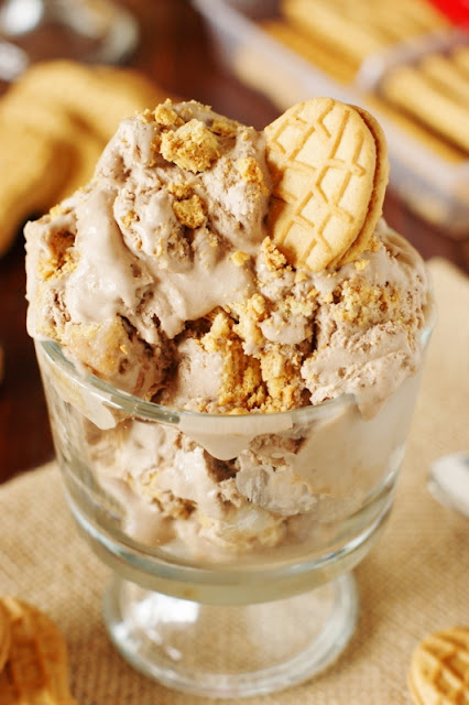 17+ Peanut Butter Sweet Treat Recipes - Chocolate Nutter Butter Ice Cream Image