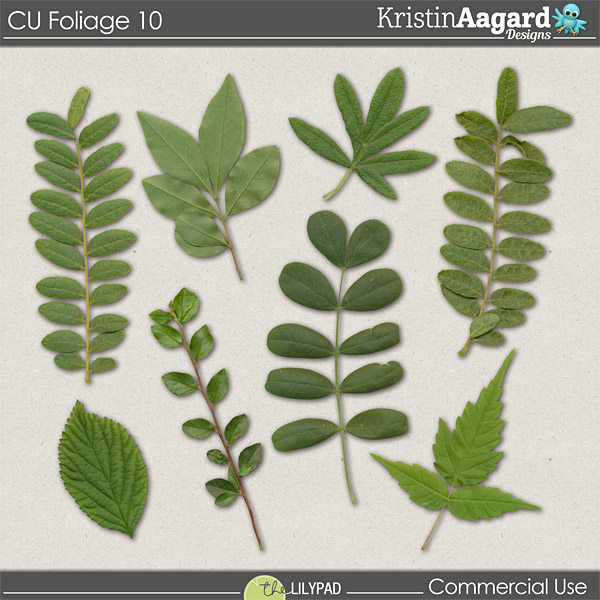 http://the-lilypad.com/store/CU-Foliage-10-Digital-Scrapbook-Design-Tools.html