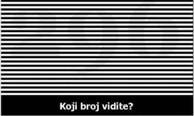 SLIKA ZALUDILA INTERNET: Koji broj vidite?   ODGOVOR MOZETE POGLEDATI NA STRANICI 99.9% LJUDI POGRIJESI