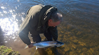 Salmon Fishing Scotland Tay, Perthshire Salmon fishing report w/e 24th March 2018.