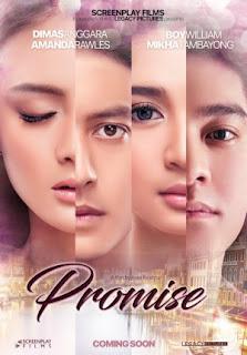 Sinopsis Film Promise (2016)