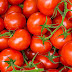 Productores de tomates denuncian trabas para exportar a Paraguay