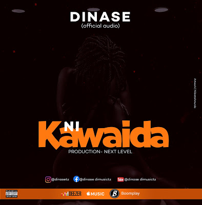 Download Audio | D Nase -  Nikawaida