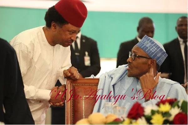 Elite politicians don't love Buhari but fear him for his vindictiveness- Shehu Sani