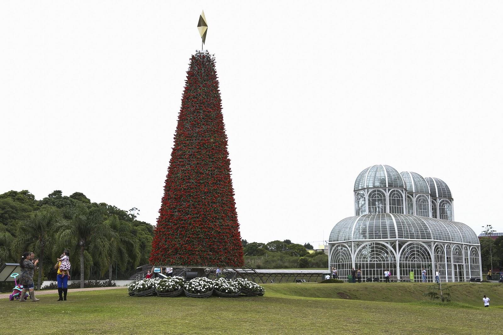 Jardim Botânico já está pronto para o Natal
