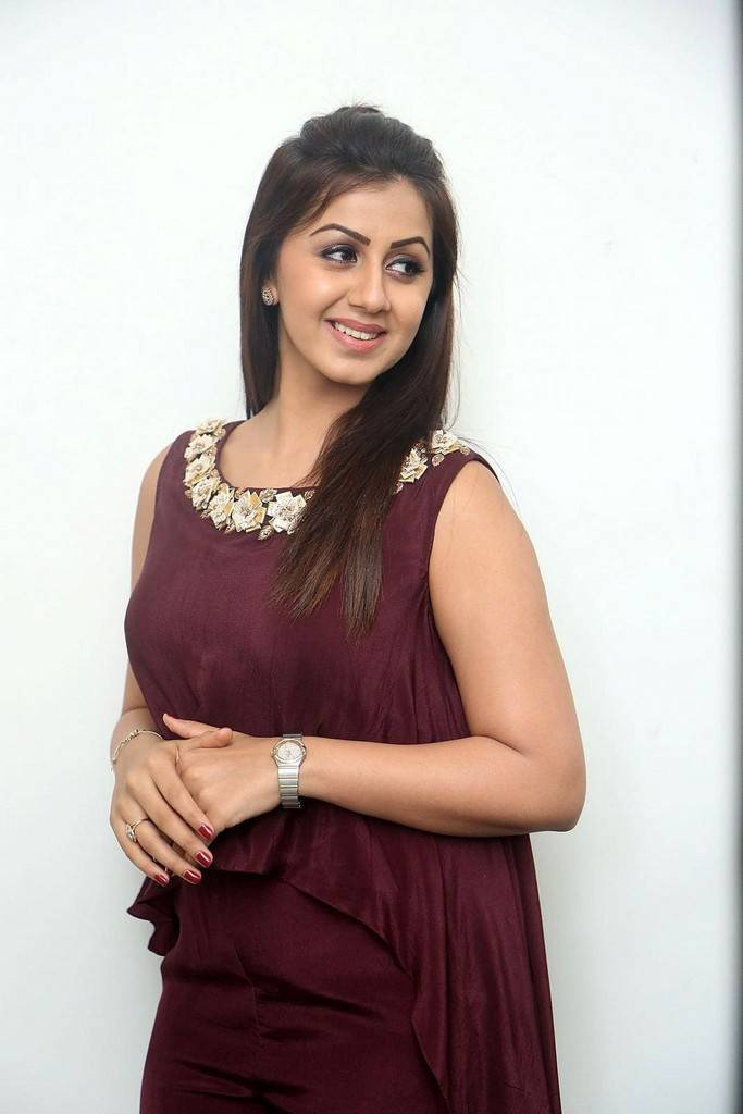 Nikki Galrani Stills At Tamil Movie Press Meet In Maroon Dress