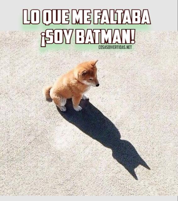 un perro ve su sombra y dice que es Batman