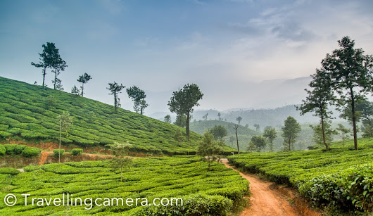 Wayanad: A Slice of Kerala state of India