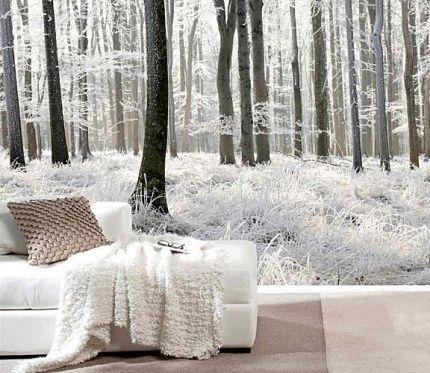metsä tapetti Metsä Taustakuva valokuvatapetti Metsä Taustakuva talvimaisema lumi puu valokuvatapetti mustavalkoinen Fund tapetti