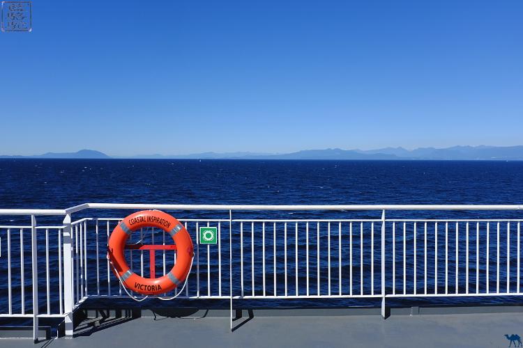 Le Chameau Bleu - Blog Voyage Tofino Canada - Ferry pour l'ile de Vancouver - Colombie Britannique