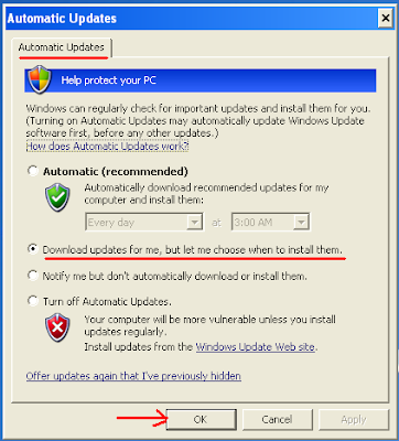 Screenshot of Automatic Updates window