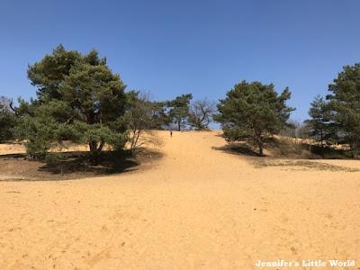 Duinengordel dune belt Belgium