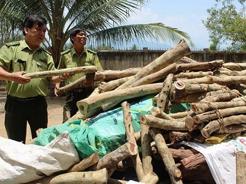 Những kiểu mua bán tận diệt của Trung Quốc tại Việt Nam ảnh 10