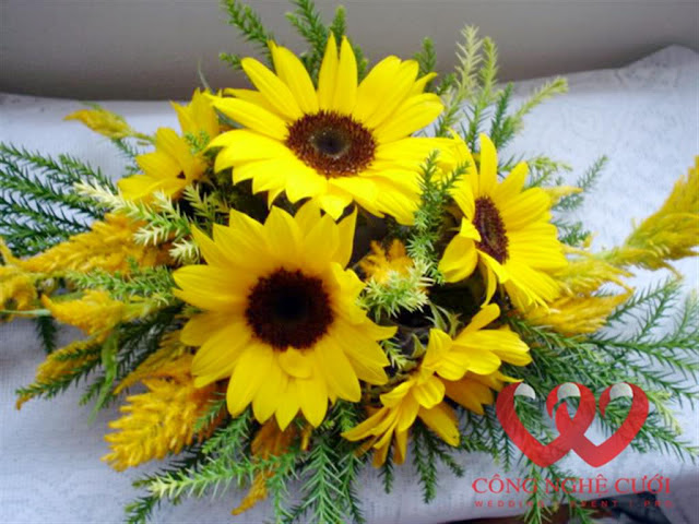 hoa de ban cuoi dep