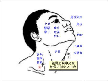 頸臂穴位   頸臂穴痛位置 - 穴道按摩經絡圖解   Source:zhongyibaike.com