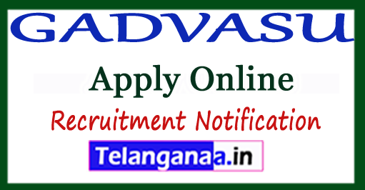 Guru Angad Dev Veterinary and Animal Sciences University GADVASU Recruitment Notification 2017 Apply