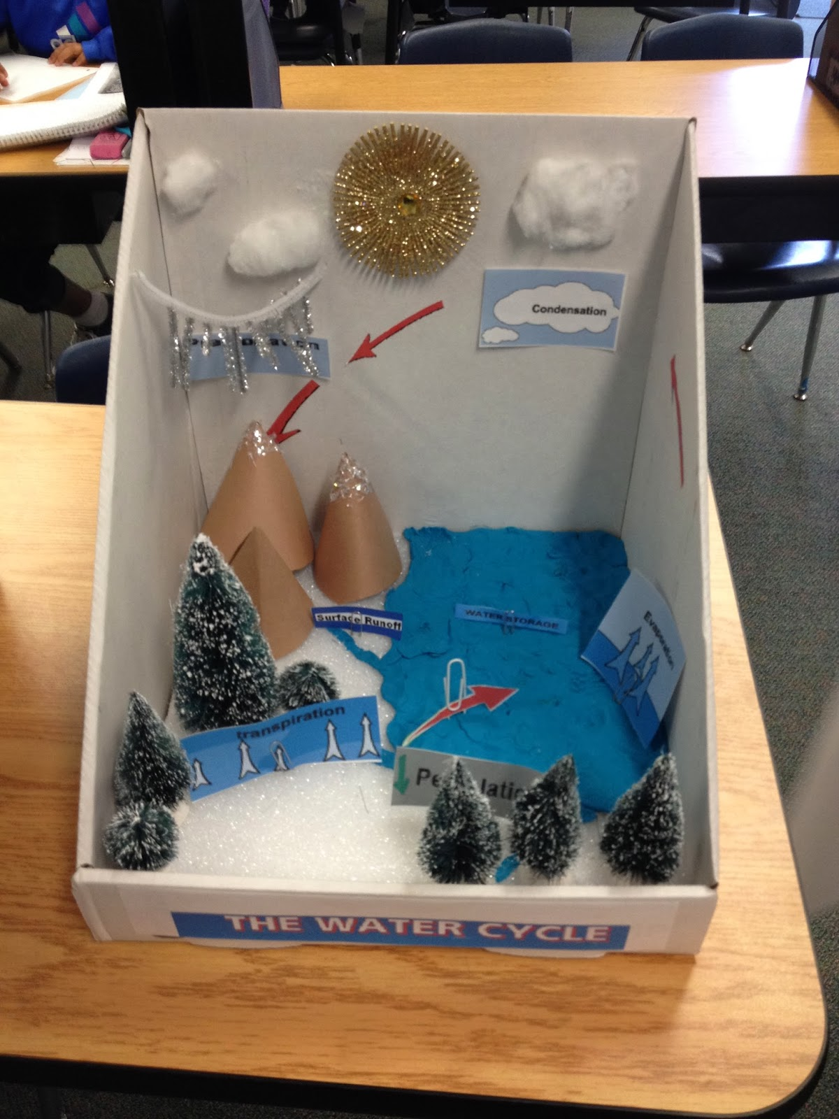 Ms Spinrod S Class Water Cycle