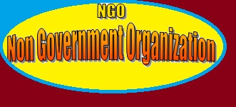 Which institutes offer courses related to NGO Management?