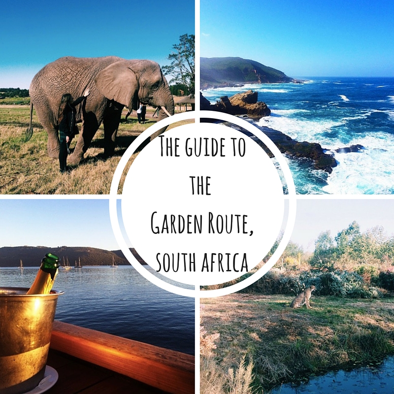 From Picturesque Forestry And Drinking Red Wine Besides A Roaring Fire To  Sunset Cruises, Elephant Walks And Kayaking With Dolphins, The Garden Route  Has A ...