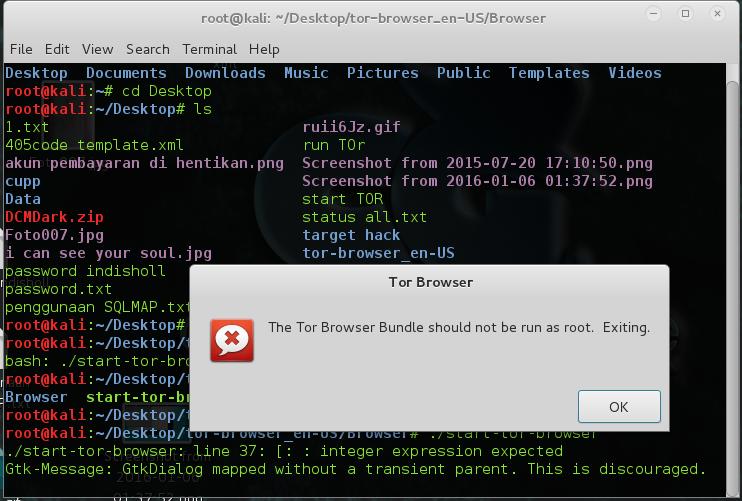 Running tor browser as root tor тор браузер hyrda