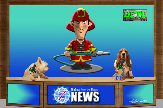 BFTB NETWoof News reports on man running into burning building for dog