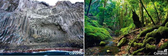 Islas Canarias, Los Órganos, Parque Nacional de Garajonay