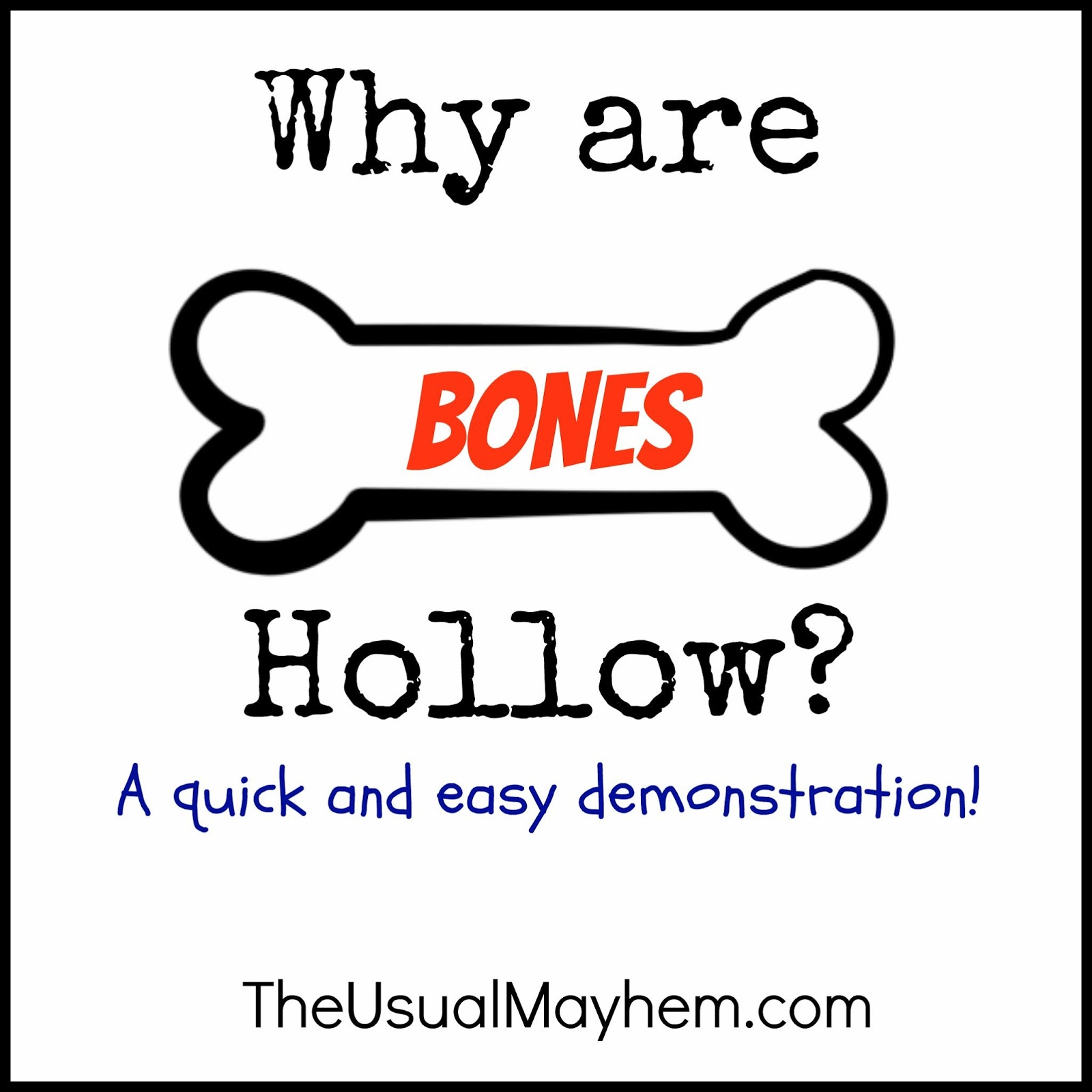 Why are bones hollow click for details bones why did they kill sweets