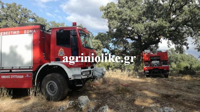 Δυτική Ελλάδα: Υψηλός ο κίνδυνος πυρκαγιάς και σήμερα Πέμπτη | Νέα ...