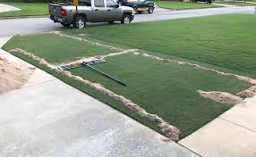 lawn leveling