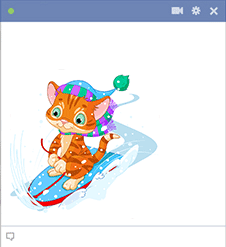Cat on snowboard
