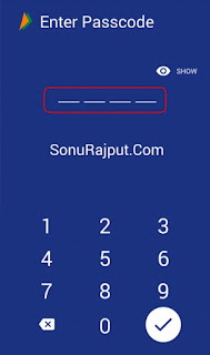 BHIM App Passcode