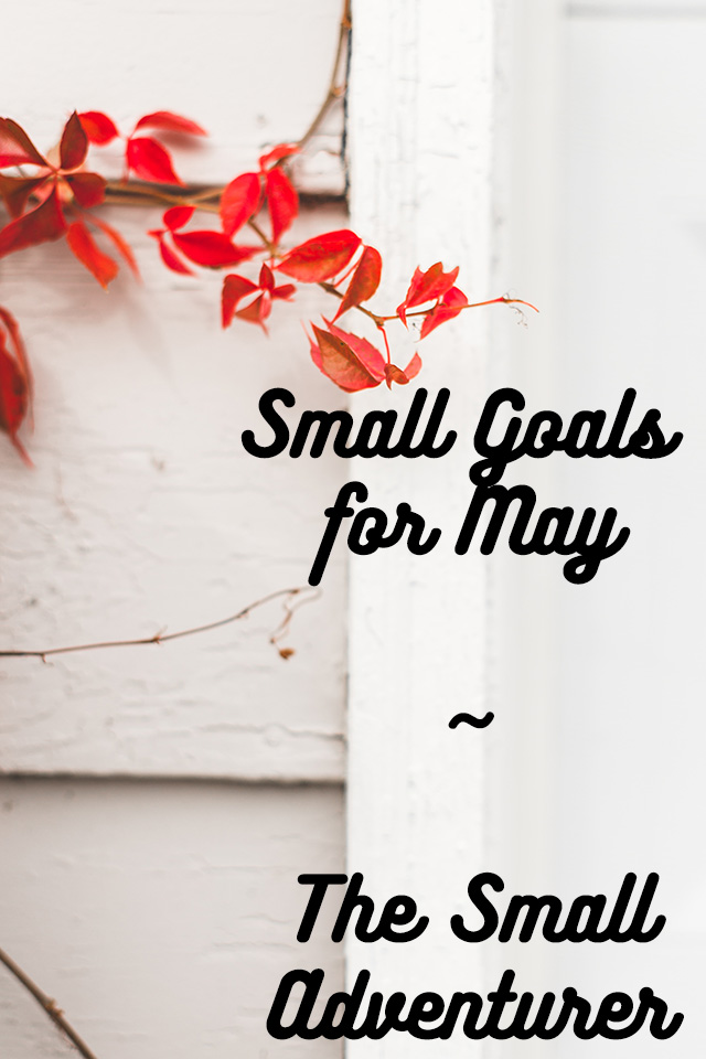 Small Goals for May || The Small Adventurer