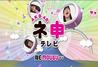 akb48 nemousu tv logo.jpg