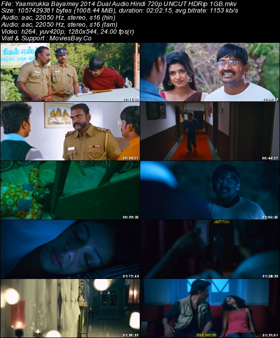 Yaamirukka Bayamey 2014 Dual Audio Hindi 720p UNCUT HDRip 1GB worldfree4u
