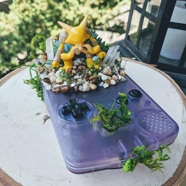 consolas-game-boy-jardines-pokemon-Waku-Waku-Island-Winnie-Sumida