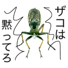 Bad insect in Japan