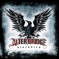 [2007] - Blackbird [Best Buy Edition]