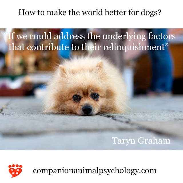 A better world for dogs by Taryn Graham. Part of Companion Animal Psychology News