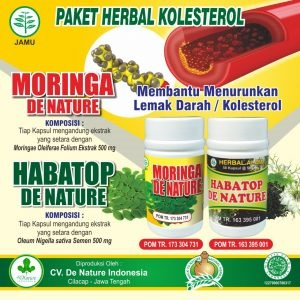 obat kolestrol de nature