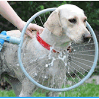 Woof Washer 360 lavage pour chien