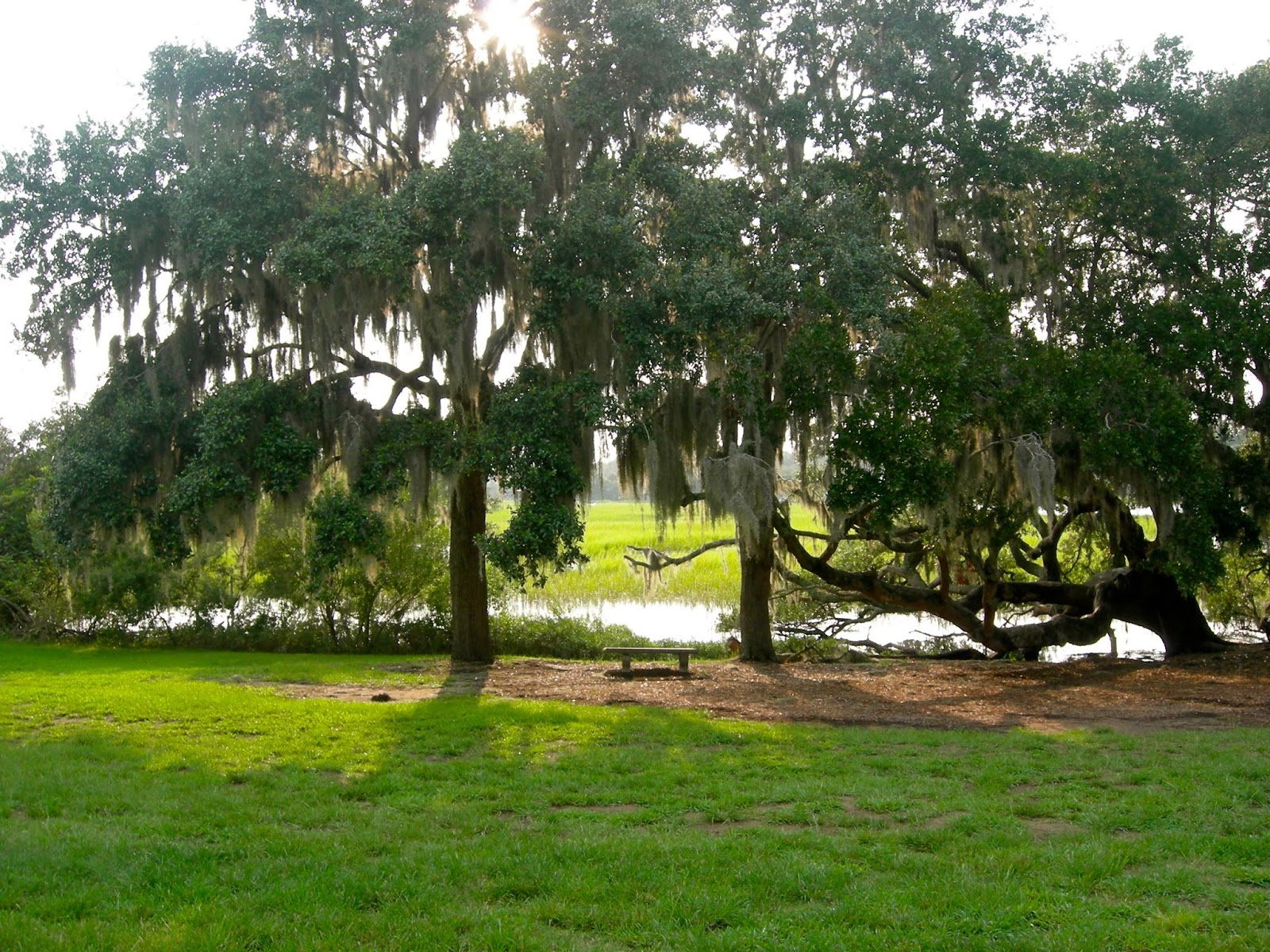 Boone Hall - Ouroutdoortravels.blogspot.com