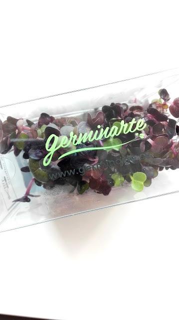 Brotes – Brote Rábano morado - Germinarte - Brotes, germinados, floresy miniverduras
