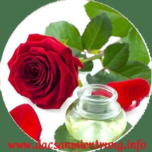 tinh dau hoa hong