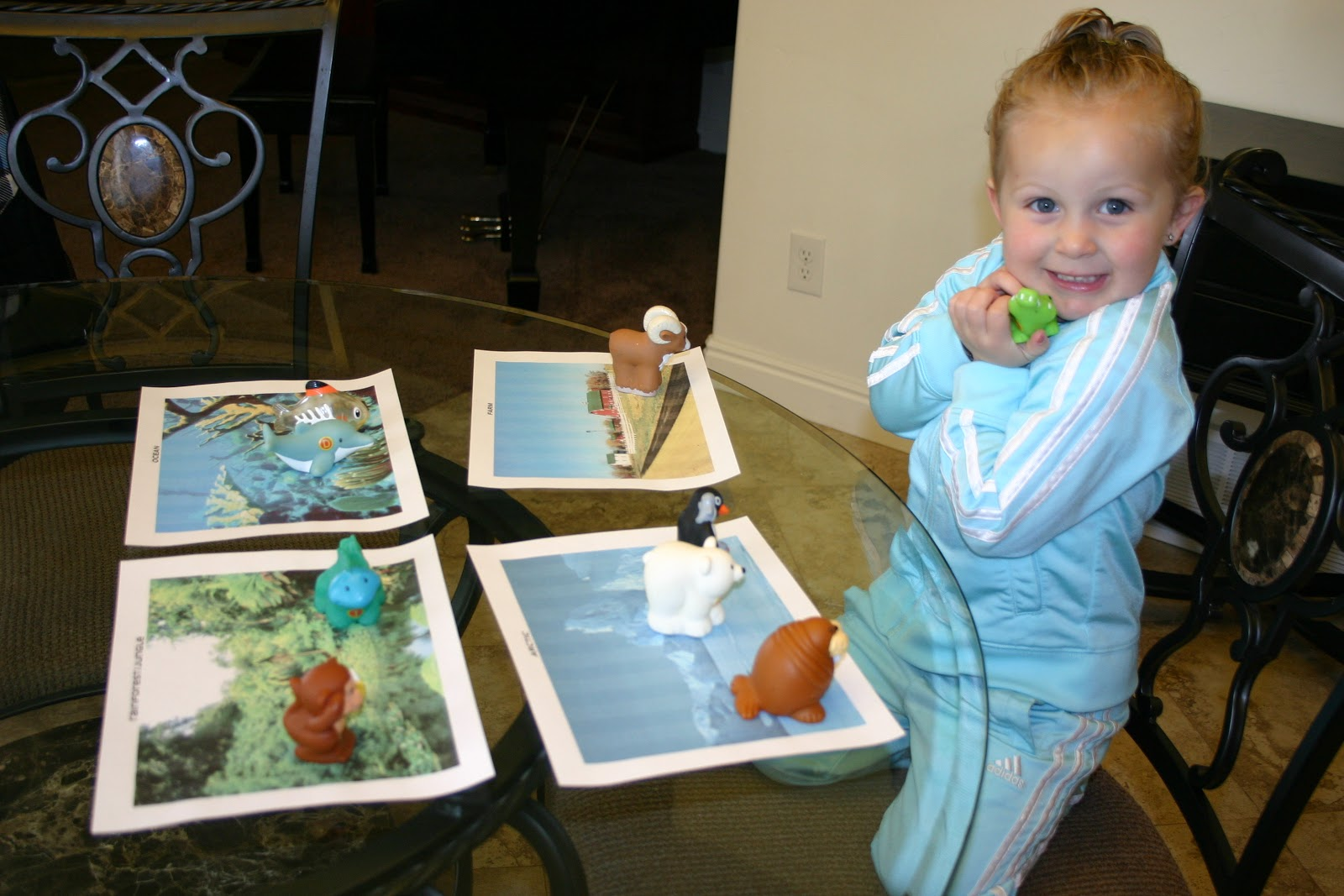 Puddle Wonderful Learning Preschool Activities Habitat Sort