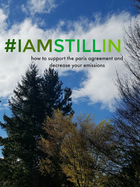 #Iamstillin how to support the paris agreement and decrease your household emissions