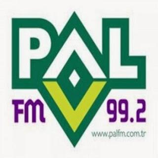 Pal Fm Türkçe Pop müzik Top 40 Listesi Şubat albüm indir