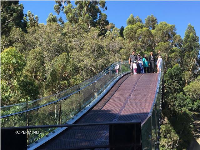 Jembatan panjang dan titik tertinggi di Perth