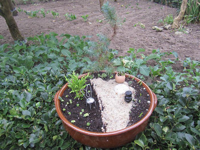 Manualidades puri diaz jardin en miniatura el parque for Jardines en miniatura