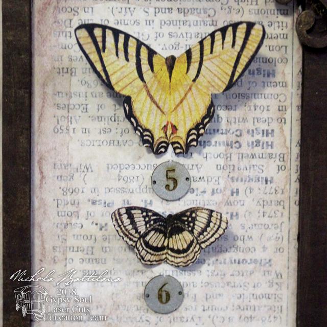 Butterfly Specimen Tray - Nichola Battilana for gslcuts.com