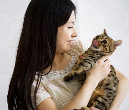 """Giải Mã Việc Mèo Liên Tục Kêu """"meo meo"""""""